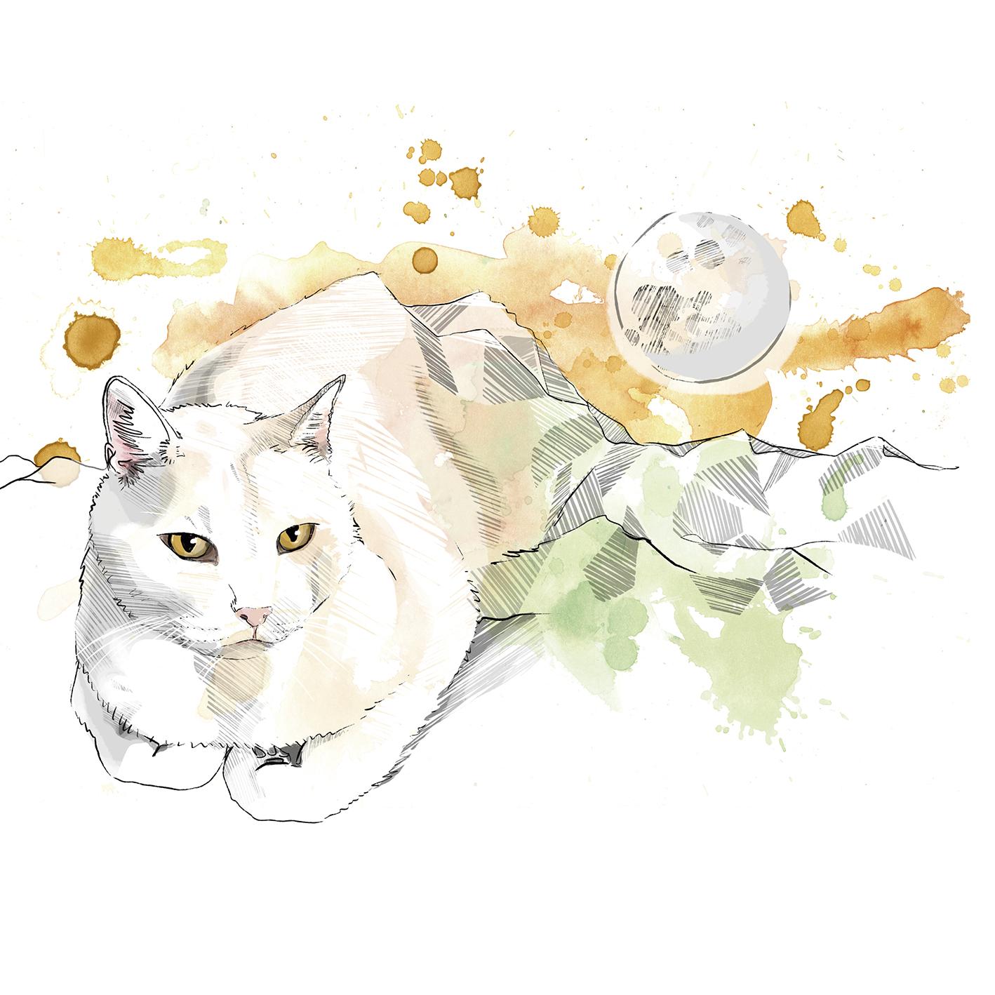 Ilustración Acuarela Dolors Quils 3